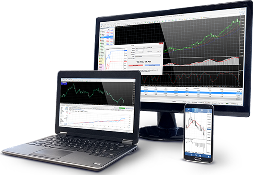 Forex trading accounts